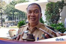 Meski Dikritik, Pemberian Anak Ayam Bagi Pelajar di Bandung Dimulai November