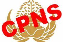 Hari Ini Pendaftaran Seleksi CPNS Mulai Ditutup