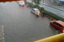 Jalan Margonda Depok Banjir, Ular Piton Keluar dari Selokan