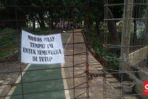 Warga Jakarta Tak Bisa Nikmati Tahun Baru di Utan Kemayoran