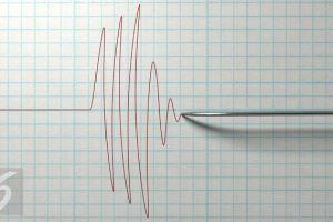 BMKG: Gempa Getarkan Kairatu Maluku Hari Ini