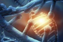 Sekali Terapi Stem Cell, Pasien Dikenakan Biaya Rp250 Juta