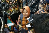 Pamer Surabaya Seperti Hutan, Risma: Saya Tambah Terus Pohon