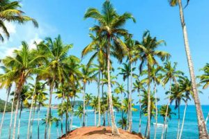 5 Negara Bebas Visa yang Wajib Kamu Kunjungi