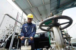 Tingkatkan Efisiensi Biaya, PLN Gasifikasi 52 Pembangkit