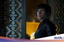 'The Town' hingga 'Ghost in The Cell' di Bioskop Trans TV Pekan Ini