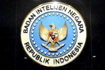 BIN Prediksi Masa Puncak Corona di Indonesia Sekitar 60-80 Hari