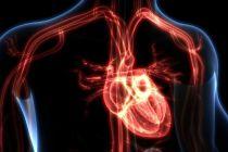Kenali Beda Henti Jantung dan Serangan Jantung
