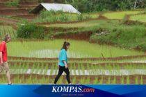 Virtual Tour ke Desa Nglanggeran, Jelajah Tempat Wisata dalam 2 Jam
