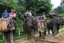 3 Fase Pemulihan Pariwisata Thailand, Mengincar Wisatawan Cina
