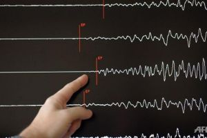 Maluku Tenggara Barat Diguncang Gempa