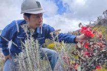 Top 3 Tekno Berita Hari Ini: Spesies Tumbuhan Papua, BMKG, VCO