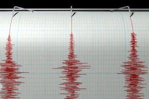 Gempa Goyang Sukabumi dan Bengkulu