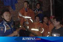 Ular Piton Sering Muncul di Rumah Warga dan Mangsa Merpati, Damkar Turun Tangan