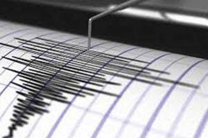 96 Gempa Guncang Bengkulu Sejak Mei, Hingga 3 Gempa Sehari