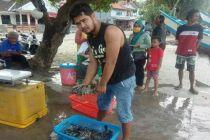 Tulang Ikan King Cobia dari Pangandaran Jadi Bahan Baku Tepung dan Kosmetik