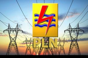 Keuangan Tidak Sehat, PLN Berharap Pemerintah Bayar Utang