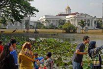 Tiket Masuk ke Kebun Raya Bogor & Cibodas Hanya Dijual Online
