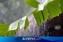 3 Faktor Pemicu Awal Musim Hujan Terjadi Akhir Oktober, Menurut BMKG